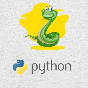 2021 Problem Solving with Python for Beginners